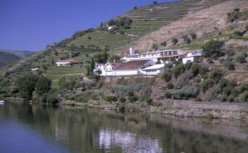 Portugal Douro Pinhao Quinta Rosa Exterior