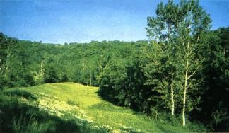 Natural Park of Montesinho