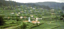 Picture of terraces