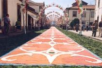 Festivities of Nossa Senhora da Agonia - Viana do Castelo