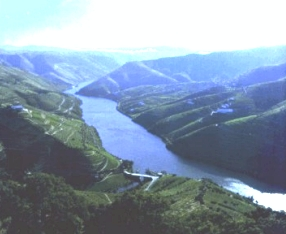 Porto and Douro - Accommodation in Portugal - Inn-Portugal